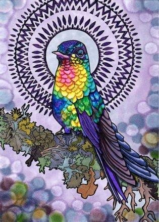 Holistic Hummiingbird by Rachel Brown